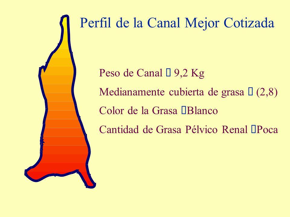 Perfil de la Canal Mejor Cotizada Peso de Canal 9,2 Kg Medianamente cubierta de grasa (2,8) Color de la Grasa Blanco Cantidad de Grasa Pélvico Renal P
