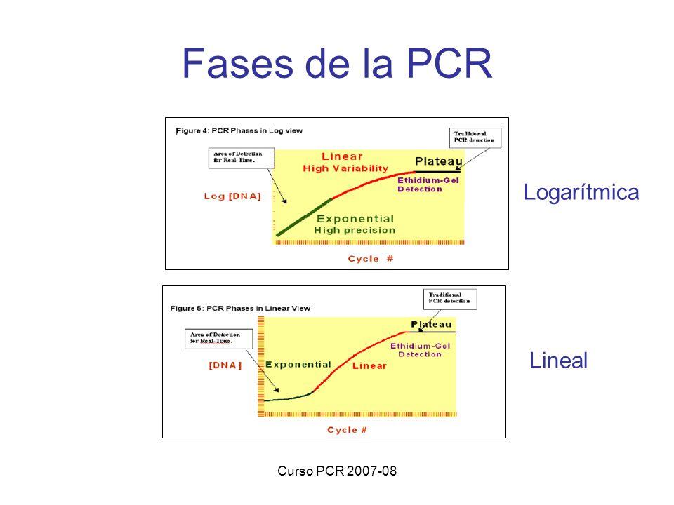 Curso PCR 2007-08 Fases de la PCR Lineal Logarítmica