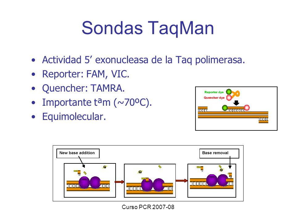 Curso PCR 2007-08 Sondas TaqMan Actividad 5 exonucleasa de la Taq polimerasa. Reporter: FAM, VIC. Quencher: TAMRA. Importante tªm (~70ºC). Equimolecul