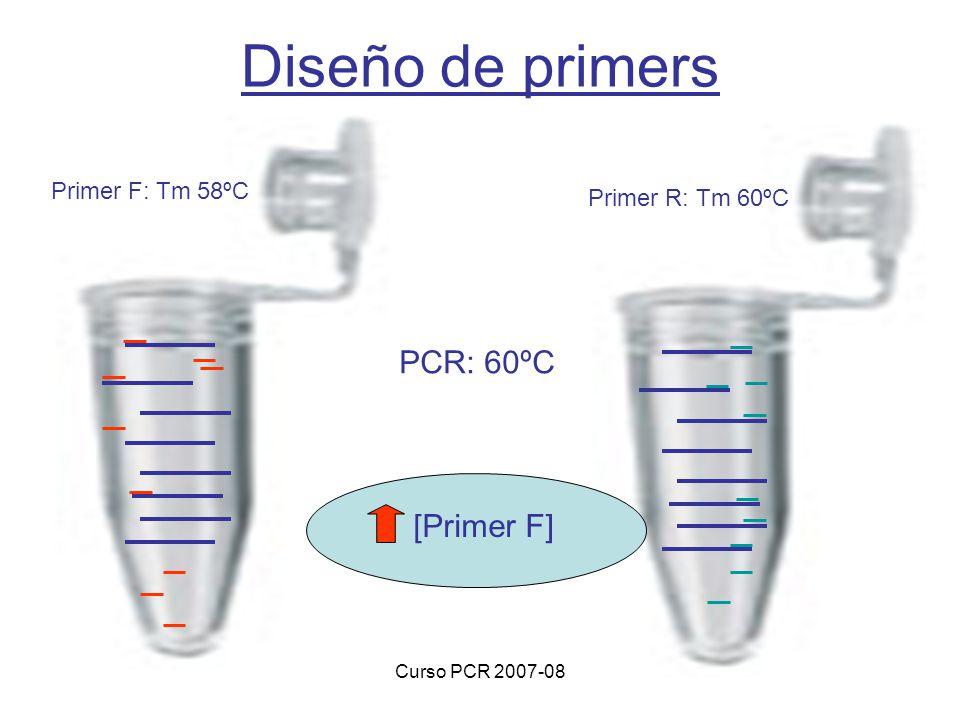 Curso PCR 2007-08 Diseño de primers Primer F: Tm 58ºC Primer R: Tm 60ºC PCR: 60ºC [Primer F]