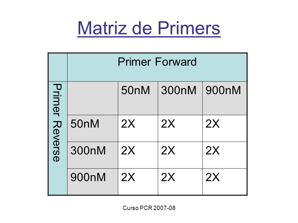 Curso PCR 2007-08 Matriz de Primers Primer Forward Primer Reverse 50nM300nM900nM 50nM2X 300nM2X 900nM2X
