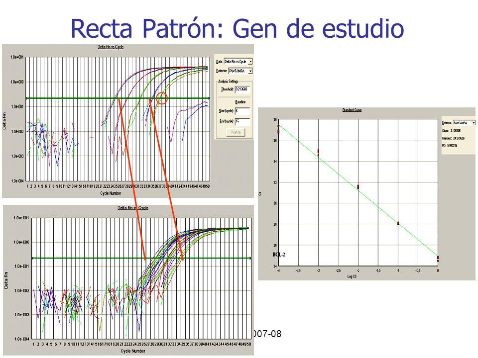 Curso PCR 2007-08 Recta Patrón: Gen de estudio