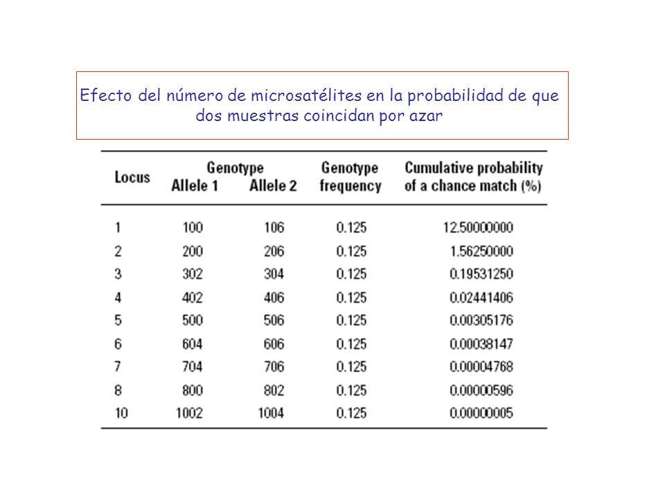 Efecto del número de microsatélites en la probabilidad de que dos muestras coincidan por azar