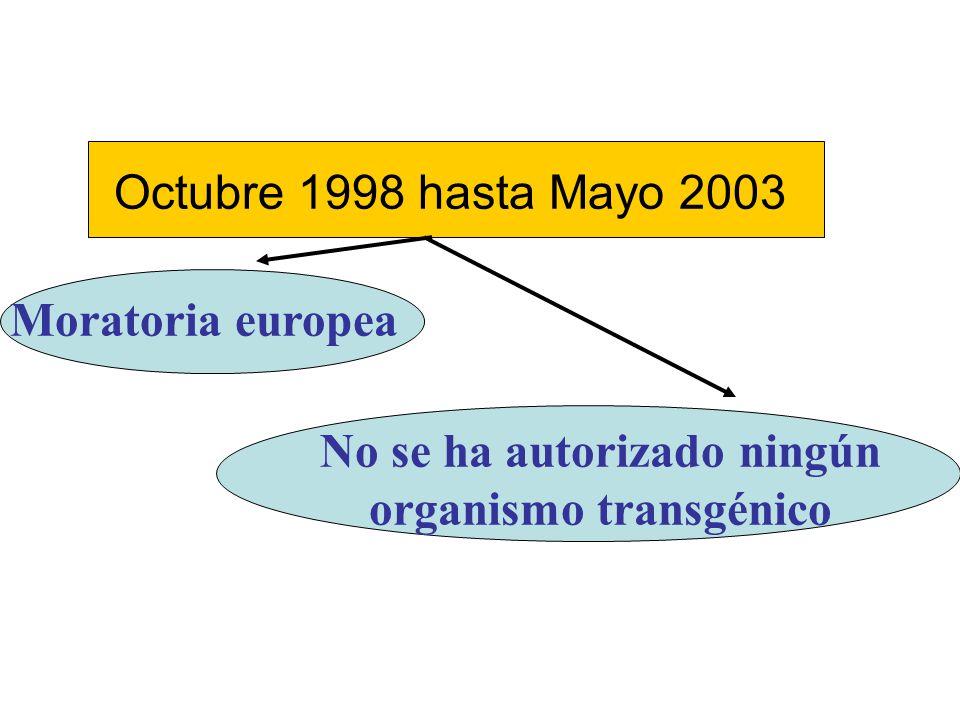 Octubre 1998 hasta Mayo 2003 Moratoria europea No se ha autorizado ningún organismo transgénico