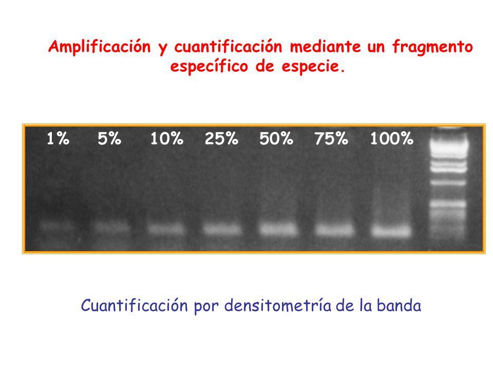 1% 5% 10% 25% 50% 75% 100% Amplificación y cuantificación mediante un fragmento específico de especie. Cuantificación por densitometría de la banda