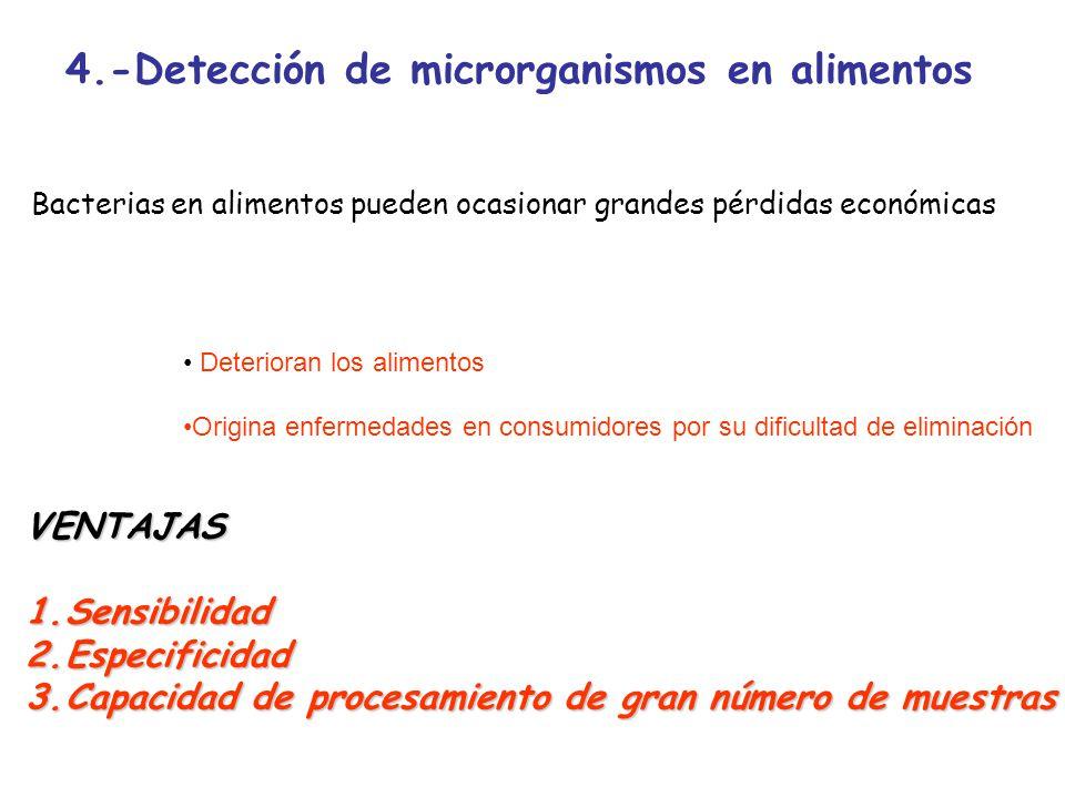 4.-Detección de microrganismos en alimentos Bacterias en alimentos pueden ocasionar grandes pérdidas económicas Deterioran los alimentos Origina enfer