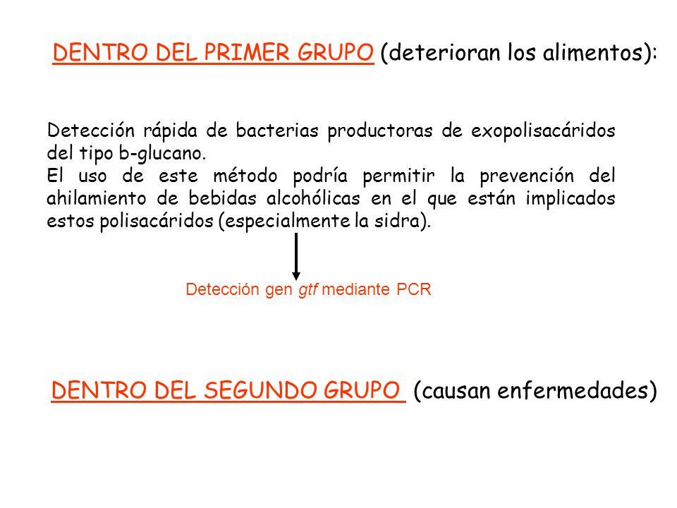 Detección rápida de bacterias productoras de exopolisacáridos del tipo b-glucano. El uso de este método podría permitir la prevención del ahilamiento