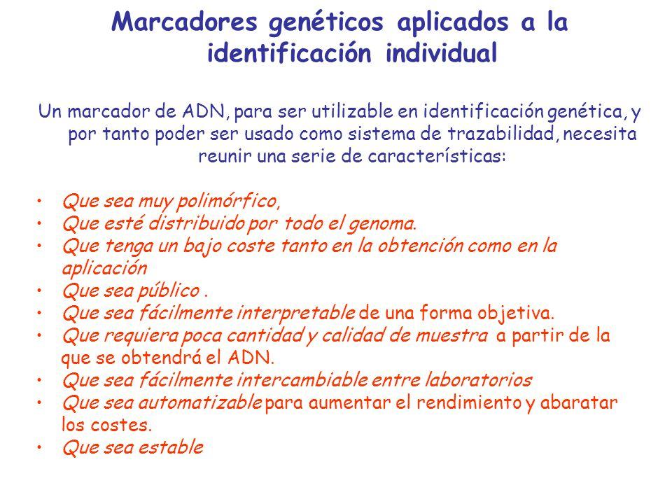 EspecieMicrosatéliteCromosomaTamañoNº alelos Bovina ETH225(D9S1)9 140-1588 INRA023(D3S10)3 196-22210 ETH10 4 (D5S3)5 209-2237 BM2113(D2S26)2 125-14310 BM1824(D1S34)1 178-1905 TGLA227(D18S1)18 77-9710 TGLA126(D20S1)20 113-1257 TGLA122(D21S6)21 137-18315 SPS115(D15)15 246-2607 Microsatélites estandarizados a nivel internacional (ISAG)