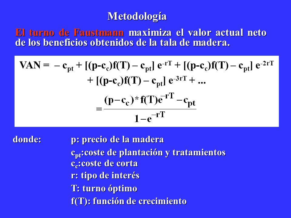 El turno de Faustmann maximiza el valor actual neto de los beneficios obtenidos de la tala de madera. VAN = – c pt + [(p-c c )f(T) – c pt ] e -rT + [(