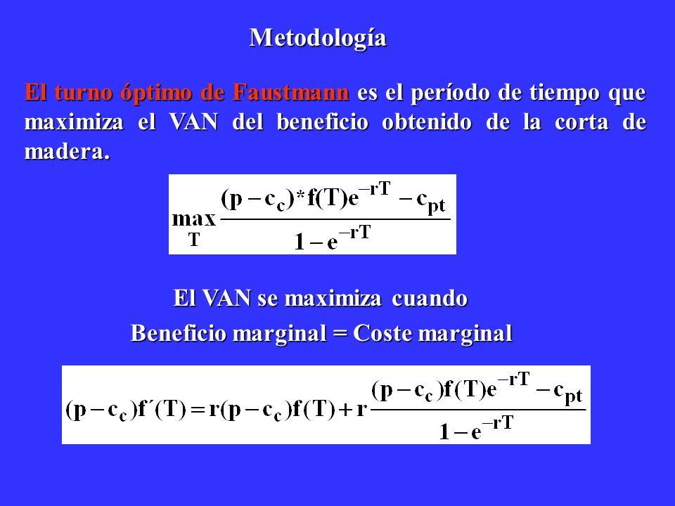 Metodología El turno óptimo de Faustmann es el período de tiempo que maximiza el VAN del beneficio obtenido de la corta de madera. El VAN se maximiza
