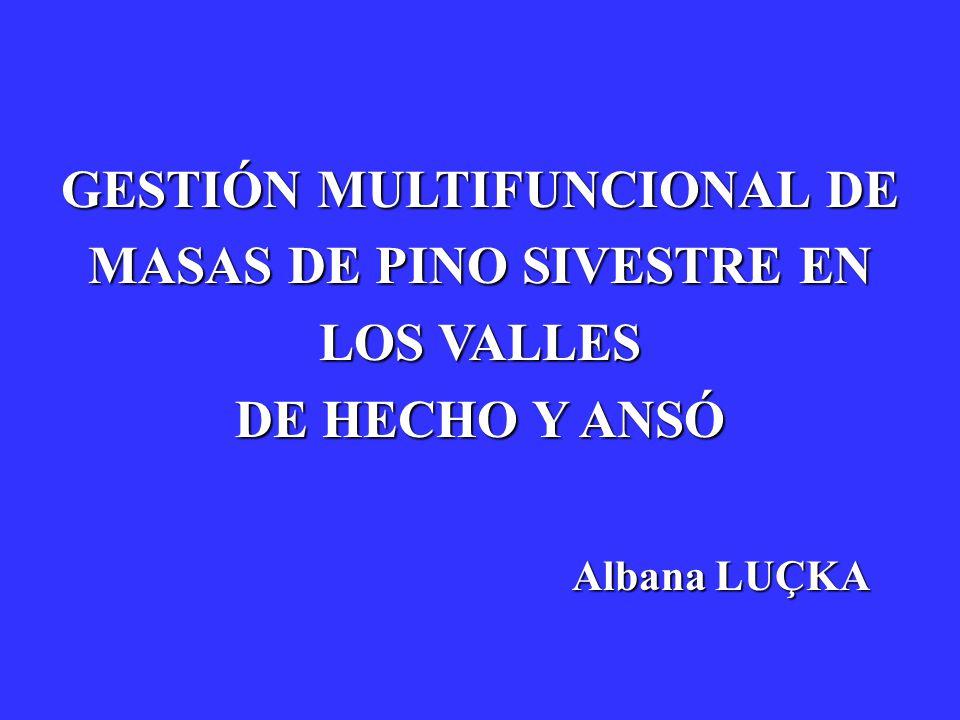 Albana LUÇKA GESTIÓN MULTIFUNCIONAL DE MASAS DE PINO SIVESTRE EN LOS VALLES DE HECHO Y ANSÓ