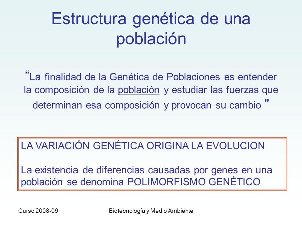 Curso 2008-09Biotecnología y Medio Ambiente Estructura genética de una población La finalidad de la Genética de Poblaciones es entender la composición