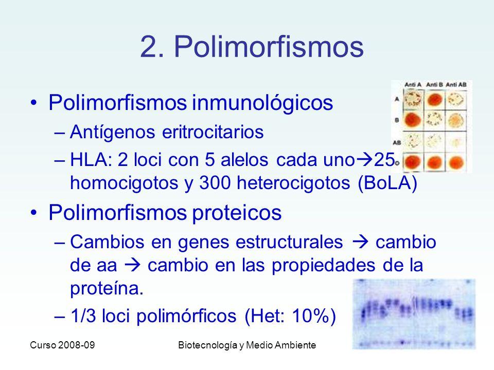 Curso 2008-09Biotecnología y Medio Ambiente 2. Polimorfismos Polimorfismos inmunológicos –Antígenos eritrocitarios –HLA: 2 loci con 5 alelos cada uno