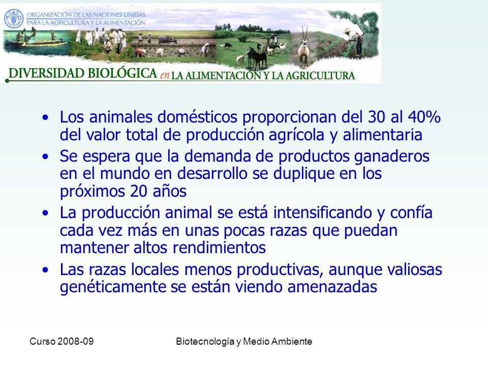 Curso 2008-09Biotecnología y Medio Ambiente La conservación de recursos genéticos animales es esencial para permitir a los agricultores adaptarse a condiciones ambientales cambiantes y a las demandas del consumo 5000 razas reconocidas de aves y animales de producción 1/3 en peligro de extinción