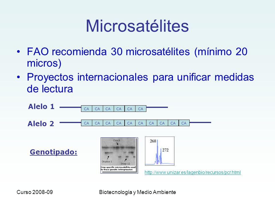 Curso 2008-09Biotecnología y Medio Ambiente FAO recomienda 30 microsatélites (mínimo 20 micros) Proyectos internacionales para unificar medidas de lec