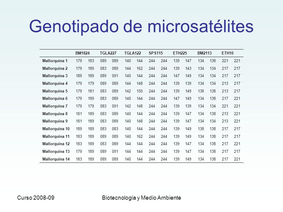 Curso 2008-09Biotecnología y Medio Ambiente BM1824TGLA227TGLA122SPS115ETH225BM2113ETH10 Mallorquina 1179183089 140144244 139147134138221 Mallorquina 2