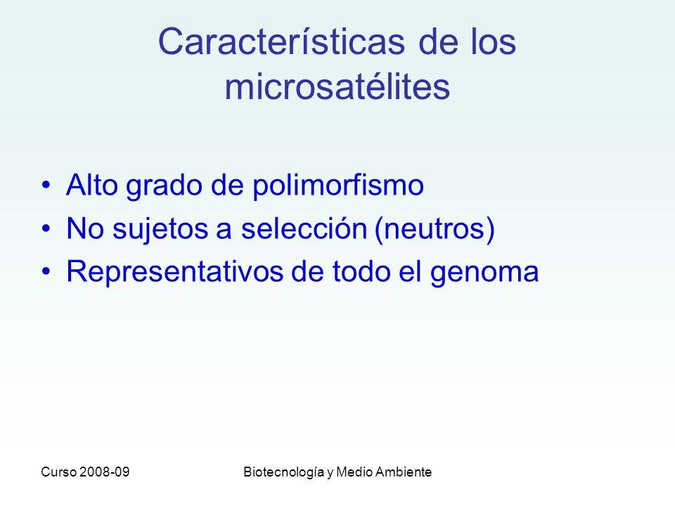 Curso 2008-09Biotecnología y Medio Ambiente Características de los microsatélites Alto grado de polimorfismo No sujetos a selección (neutros) Represen
