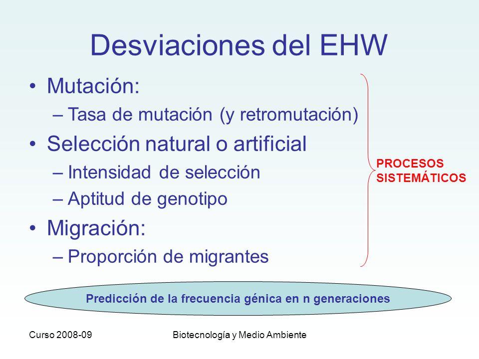 Curso 2008-09Biotecnología y Medio Ambiente Desviaciones del EHW Mutación: –Tasa de mutación (y retromutación) Selección natural o artificial –Intensi