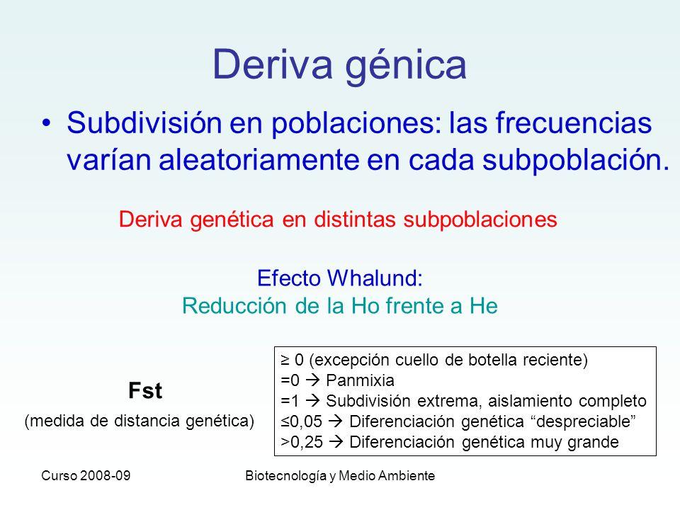 Curso 2008-09Biotecnología y Medio Ambiente Deriva génica Subdivisión en poblaciones: las frecuencias varían aleatoriamente en cada subpoblación. Deri