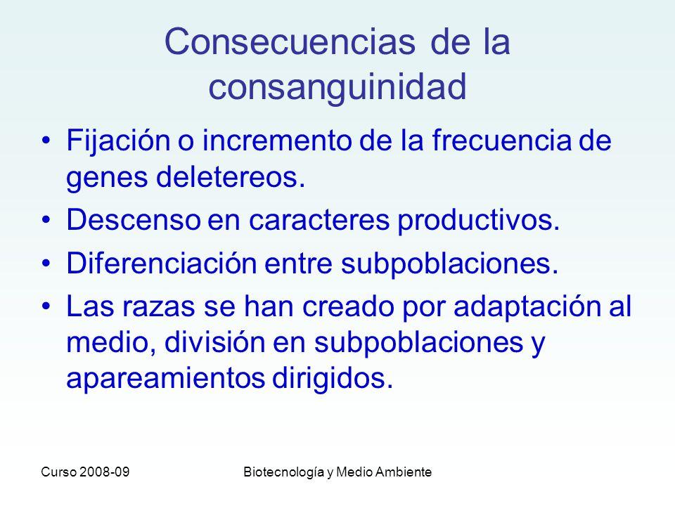 Curso 2008-09Biotecnología y Medio Ambiente Consecuencias de la consanguinidad Fijación o incremento de la frecuencia de genes deletereos. Descenso en