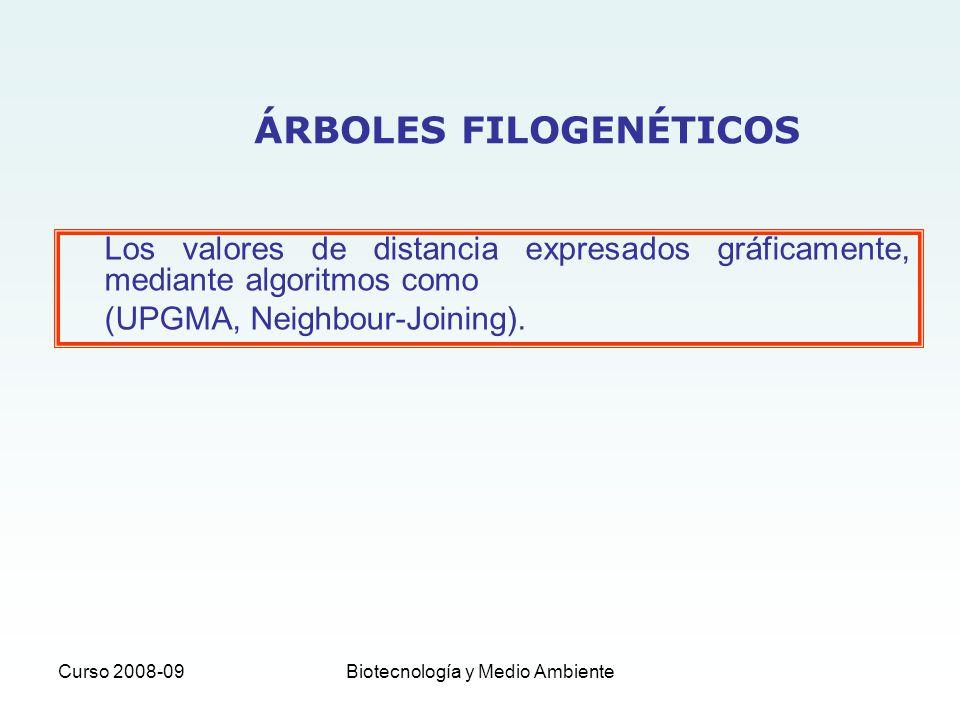 Curso 2008-09Biotecnología y Medio Ambiente Los valores de distancia expresados gráficamente, mediante algoritmos como (UPGMA, Neighbour-Joining). ÁRB