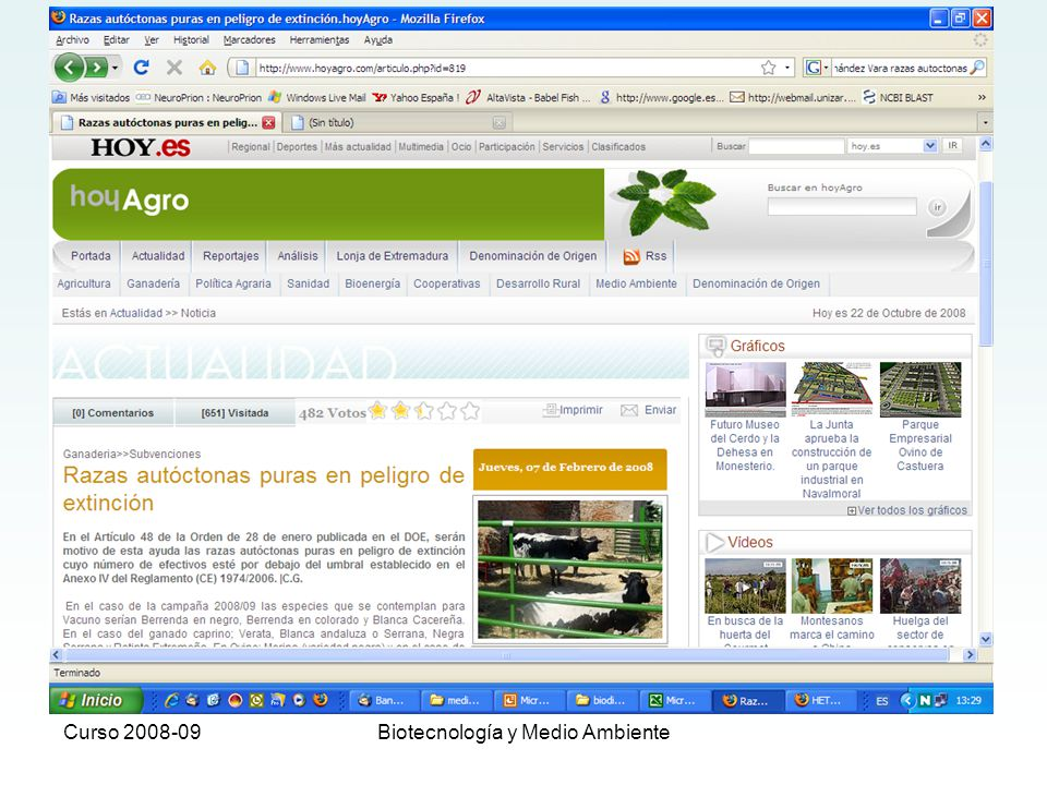 Curso 2008-09Biotecnología y Medio Ambiente Causas de la desaparición de razas autóctonas (Garcia-Dory y Martinez Vicente) Intensificación del Plan Nacional de repoblaciones iniciado en 1940.