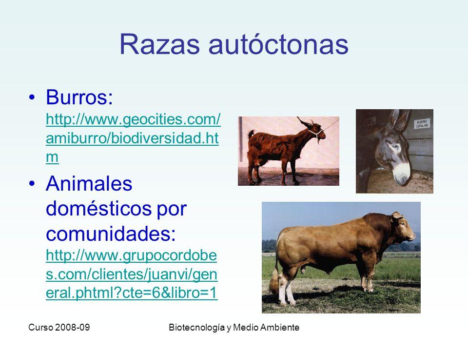 Curso 2008-09Biotecnología y Medio Ambiente Razas autóctonas Burros: http://www.geocities.com/ amiburro/biodiversidad.ht m http://www.geocities.com/ a