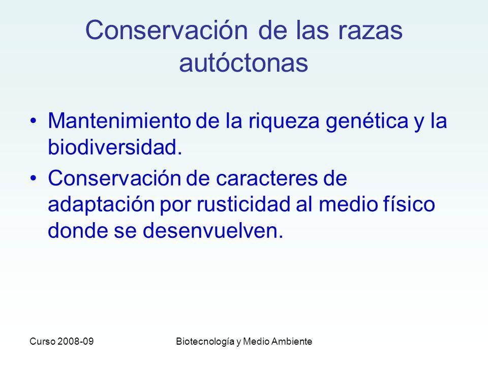 Curso 2008-09Biotecnología y Medio Ambiente FAO recomienda 30 microsatélites (mínimo 20 micros) Proyectos internacionales para unificar medidas de lectura Microsatélites CA Alelo 1 Alelo 2 Genotipado: http://www.unizar.es/lagenbio/recursos/pcr.html