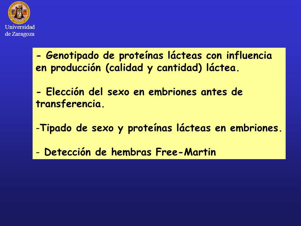 Universidad de Zaragoza - Genotipado de proteínas lácteas con influencia en producción (calidad y cantidad) láctea.