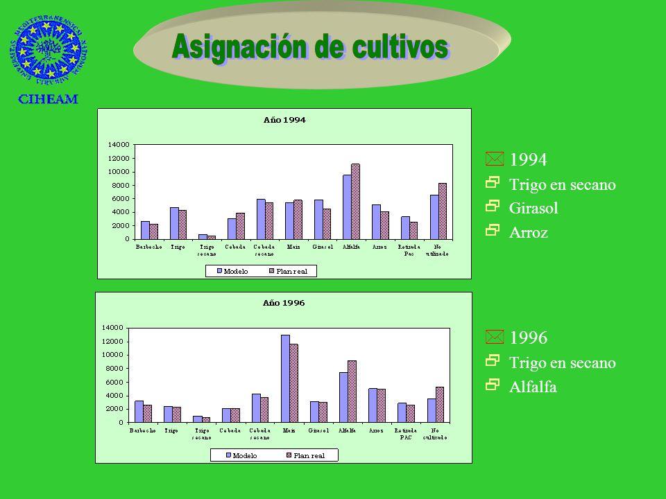 H Comparar los resultados obtenidos mediante el modelo con los datos reales * 1994, 1996 * Tres subzonas áSuperficie que ocupa cada cultivo áAsignación de cultivos por cada tipo de suelo áMargen neto áDemanda de agua