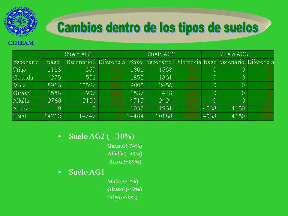 Cereales de invierno en secano (+22%)Arroz (+20%) Alfalfa (-39%) Cereales de invierno en regadío (-21%) No cultivada (+66%) Girasol (-58%)