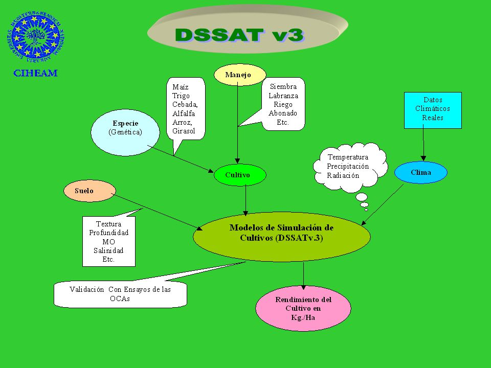 Reducción del abono 50% Cambian los coeficientes de la función objetivo DSSAT v3