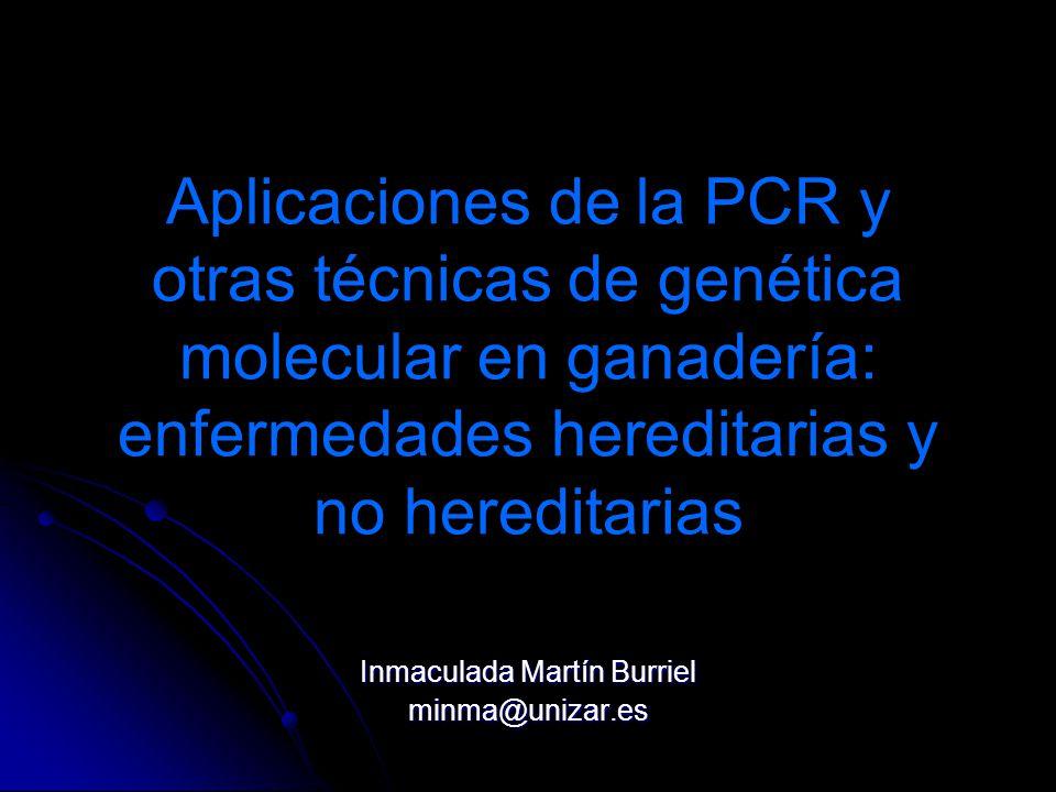 Aplicaciones de la PCR y otras técnicas de genética molecular en ganadería: enfermedades hereditarias y no hereditarias Inmaculada Martín Burriel minm