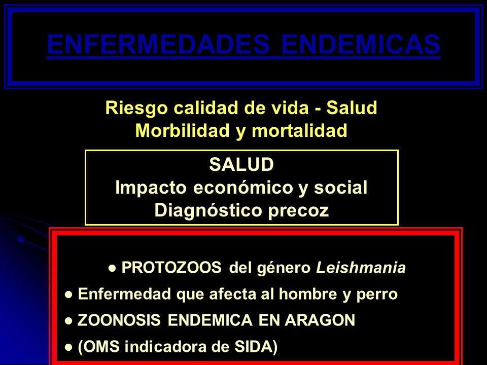 ENFERMEDADES ENDEMICAS SALUD Impacto económico y social Diagnóstico precoz SALUD Impacto económico y social Diagnóstico precoz PROTOZOOS del género Le