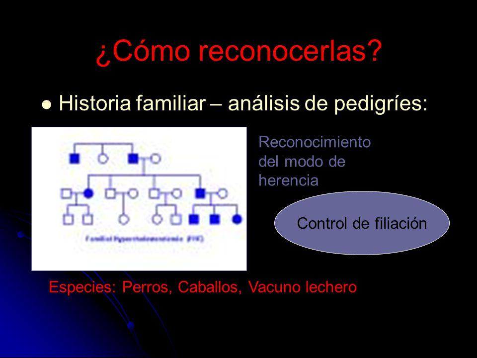 ¿Cómo reconocerlas? Historia familiar – análisis de pedigríes: Especies: Perros, Caballos, Vacuno lechero Reconocimiento del modo de herencia Control