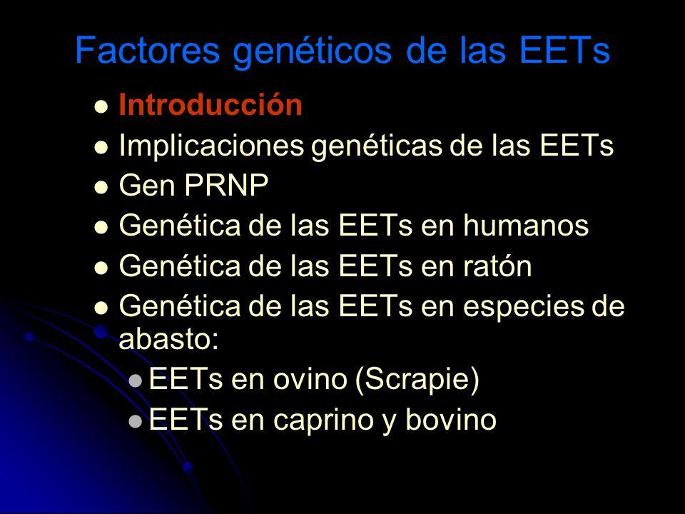 Factores genéticos de las EETs Introducción Implicaciones genéticas de las EETs Gen PRNP Genética de las EETs en humanos Genética de las EETs en ratón