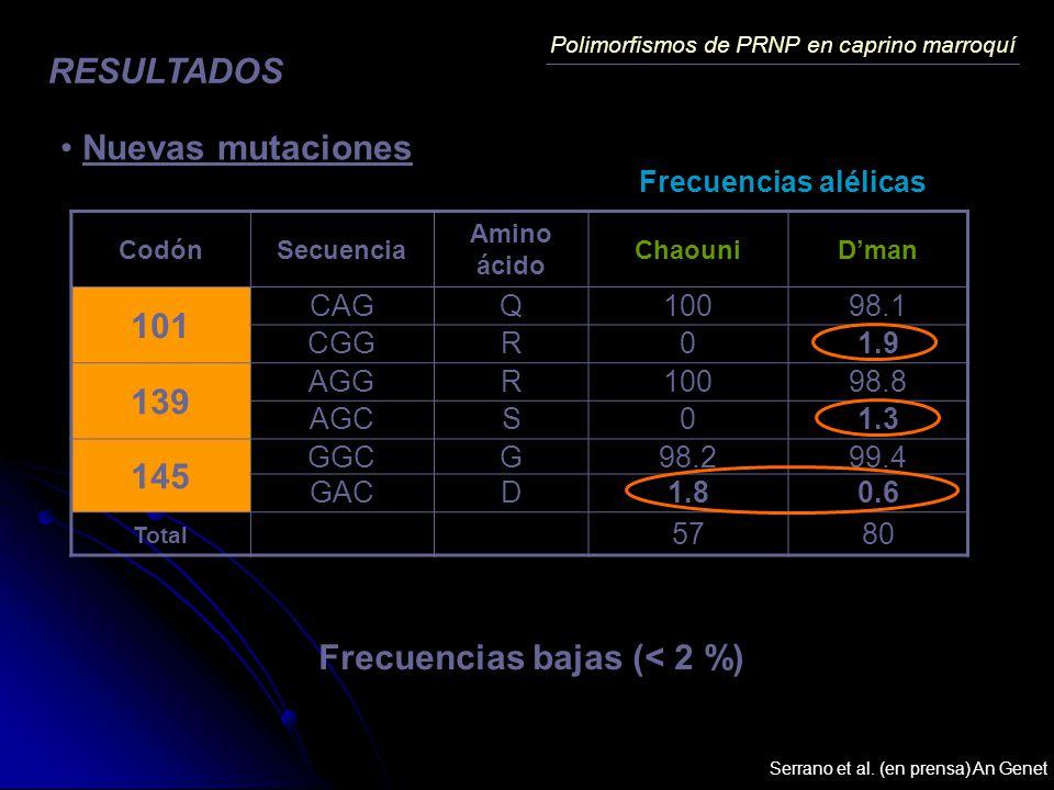 Polimorfismos de PRNP en caprino marroquí RESULTADOS Nuevas mutaciones CodónSecuencia Amino ácido ChaouniDman 101 CAGQ10098.1 CGGR01.9 139 AGGR10098.8