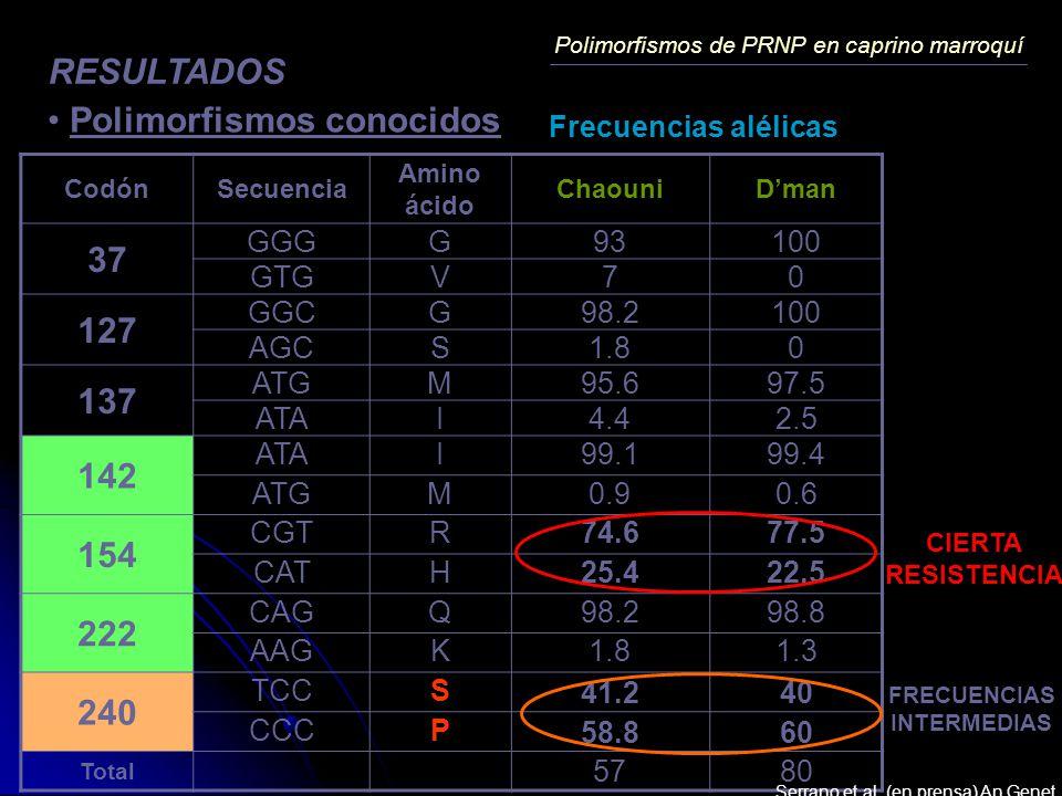 Polimorfismos de PRNP en caprino marroquí RESULTADOS Polimorfismos conocidos CodónSecuencia Amino ácido ChaouniDman 37 GGGG93100 GTGV70 127 GGCG98.210