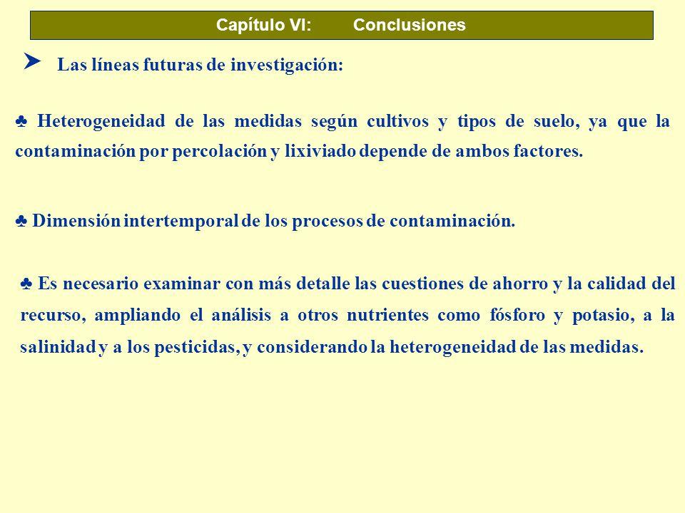 Capítulo VI: Conclusiones Dimensión intertemporal de los procesos de contaminación. SLas líneas futuras de investigación: Heterogeneidad de las medida