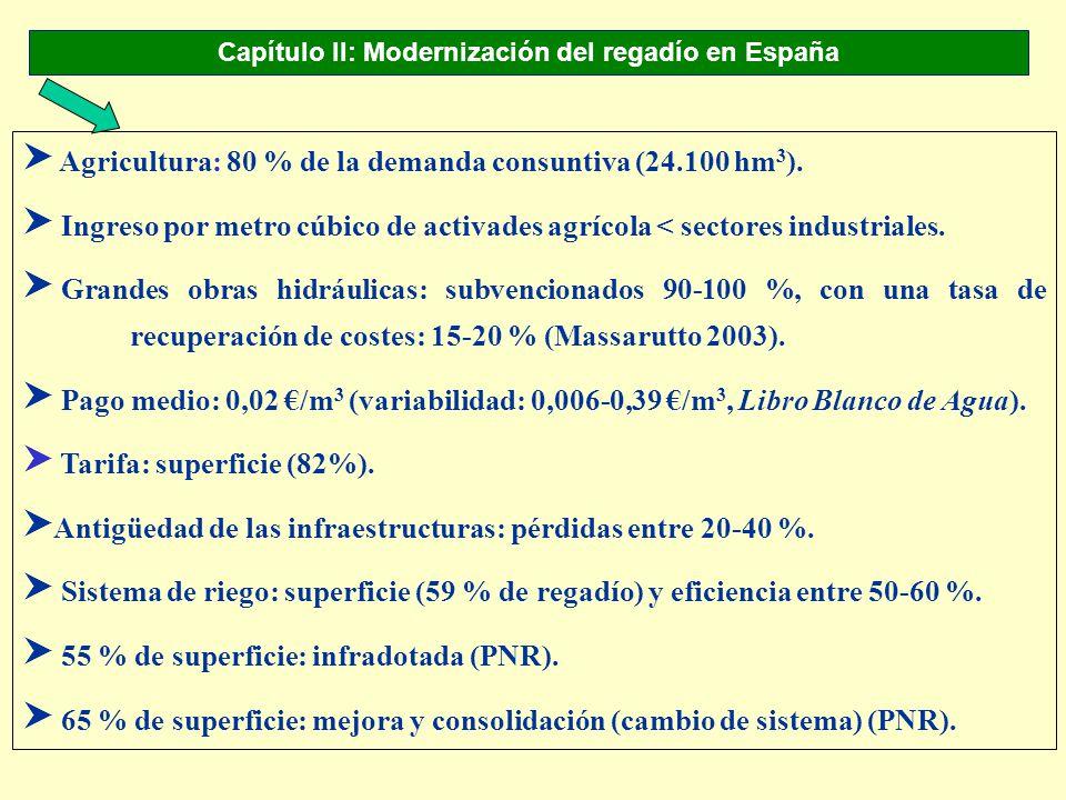 Capítulo II: Modernización del regadío en España S Agricultura: 80 % de la demanda consuntiva (24.100 hm 3 ). S Ingreso por metro cúbico de activades