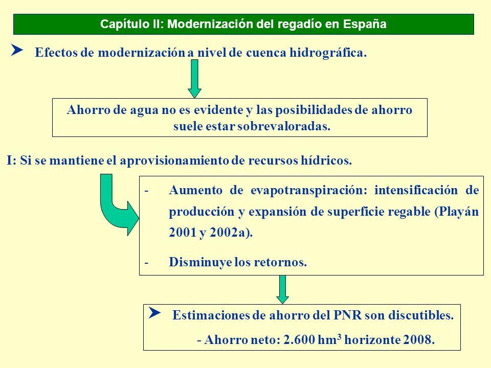 Capítulo II: Modernización del regadío en España SEfectos de modernización a nivel de cuenca hidrográfica. Ahorro de agua no es evidente y las posibil