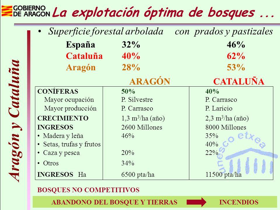 La explotación óptima de bosques... Aragón y Cataluña Superficie forestal arbolada con prados y pastizales España 32% 46% Cataluña 40% 62% Aragón 28%