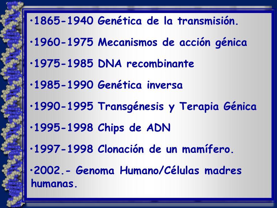 1.Estudios en investigación básica. Funcionamiento de genes - Muchos estudios realizados.