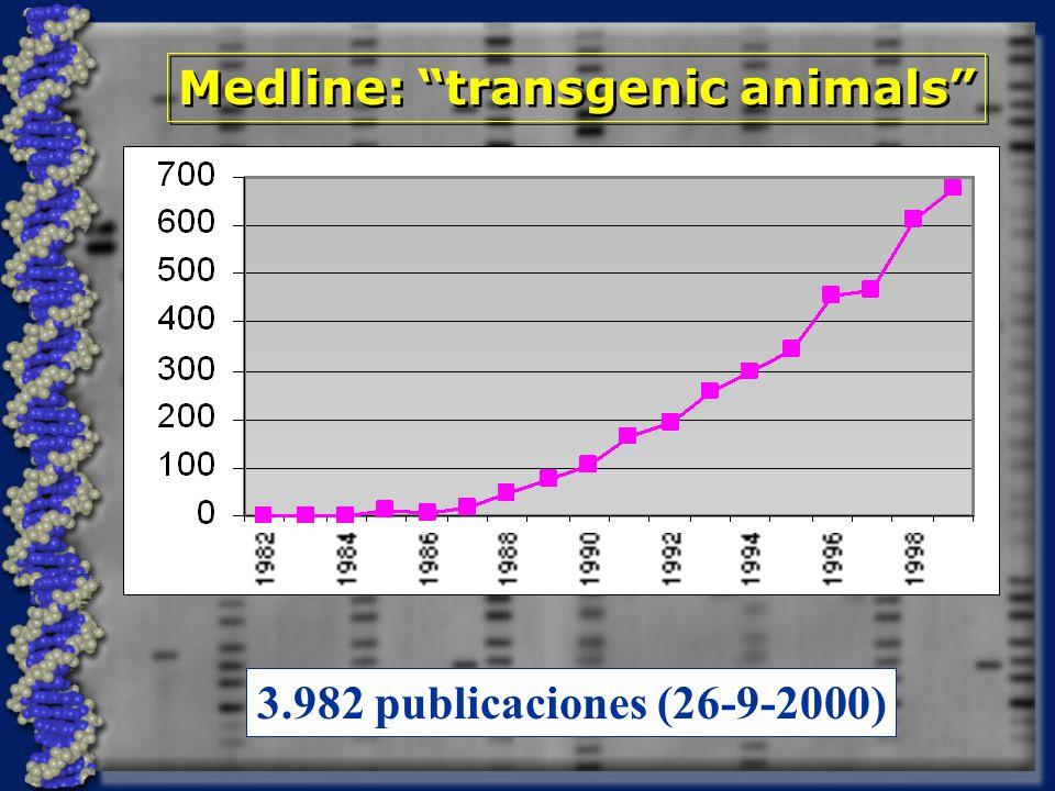 Medline: transgenic animals 3.982 publicaciones (26-9-2000)