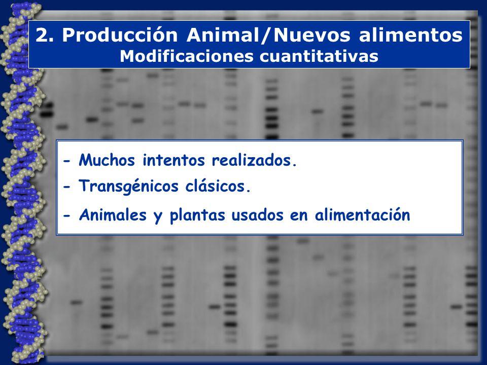 2.Producción Animal/Nuevos alimentos Modificaciones cuantitativas - Muchos intentos realizados.