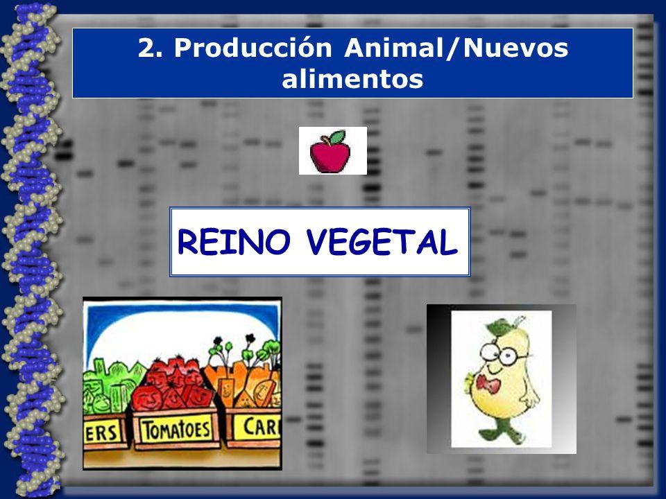 2. Producción Animal/Nuevos alimentos REINO VEGETAL