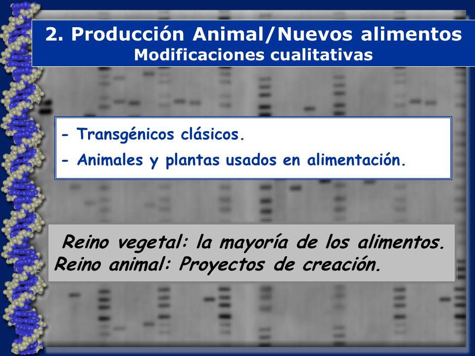 2.Producción Animal/Nuevos alimentos Modificaciones cualitativas - Transgénicos clásicos.