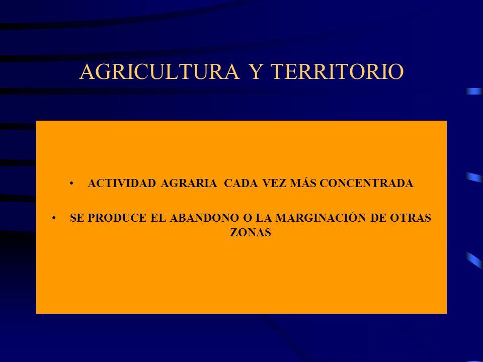 AGRICULTURA Y TERRITORIO ACTIVIDAD AGRARIA CADA VEZ MÁS CONCENTRADA SE PRODUCE EL ABANDONO O LA MARGINACIÓN DE OTRAS ZONAS