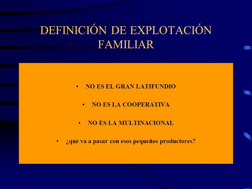 DEFINICIÓN DE EXPLOTACIÓN FAMILIAR NO ES EL GRAN LATIFUNDIO NO ES LA COOPERATIVA NO ES LA MULTINACIONAL ¿qué va a pasar con esos pequeños productores?