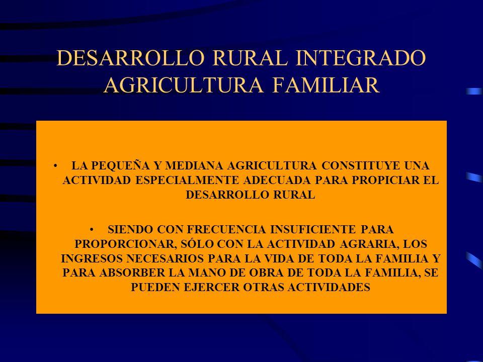 DESARROLLO RURAL INTEGRADO AGRICULTURA FAMILIAR LA PEQUEÑA Y MEDIANA AGRICULTURA CONSTITUYE UNA ACTIVIDAD ESPECIALMENTE ADECUADA PARA PROPICIAR EL DES